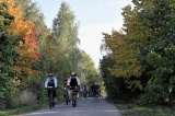 Cyclists in the fall